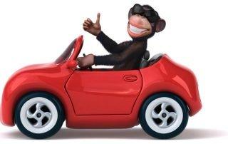 illustrated monkey driving a car